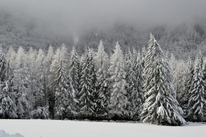 Winter Traveling Tips